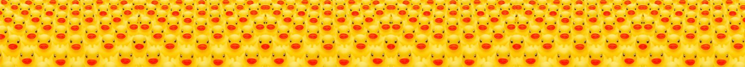 rubber-duck-thin